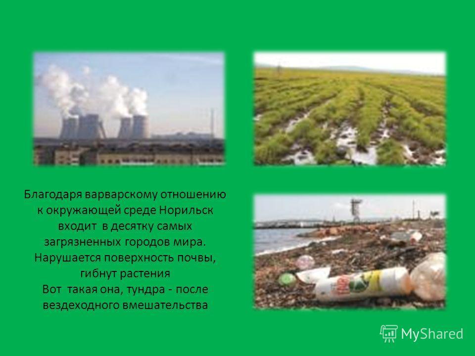 Благодаря варварскому отношению к окружающей среде Норильск входит в десятку самых загрязненных городов мира. Нарушается поверхность почвы, гибнут растения Вот такая она, тундра - после вездеходного вмешательства