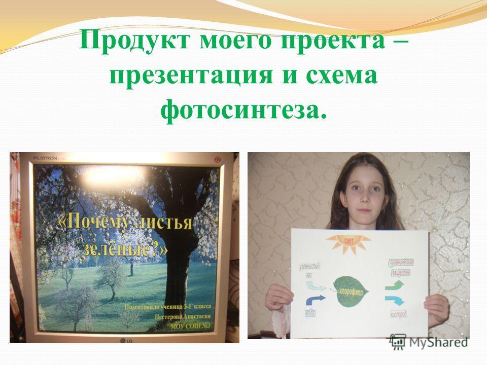Продукт моего проекта – презентация и схема фотосинтеза.