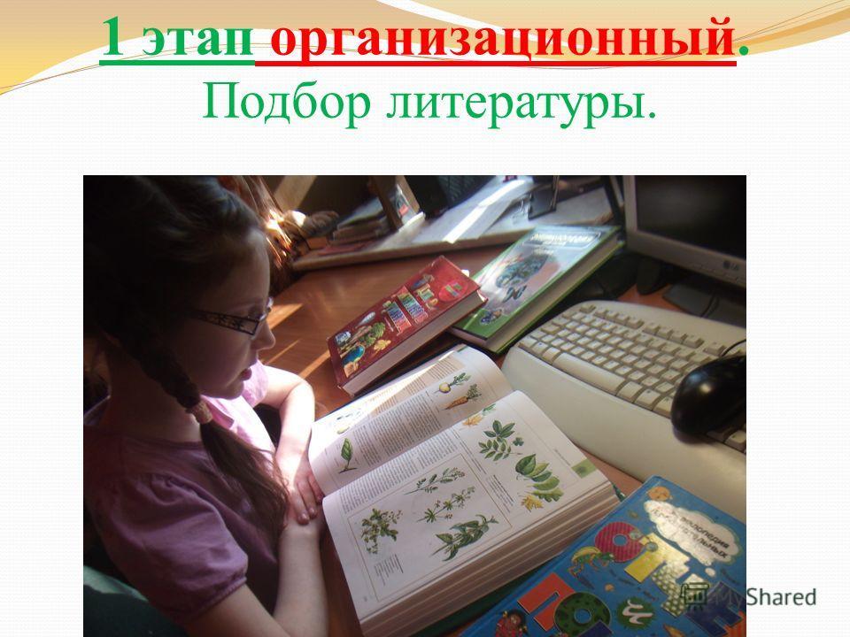 1 этап организационный. Подбор литературы.