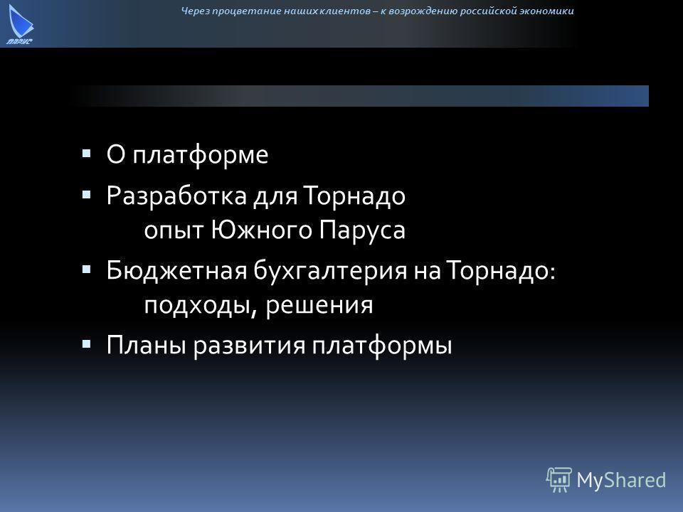 Через процветание наших клиентов – к возрождению российской экономики О платформе Разработка для Торнадо опыт Южного Паруса Бюджетная бухгалтерия на Торнадо: подходы, решения Планы развития платформы