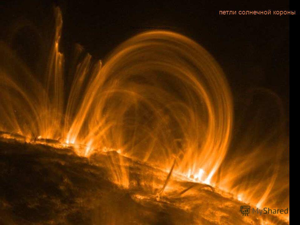 петли солнечной короны Петли солнечной короны