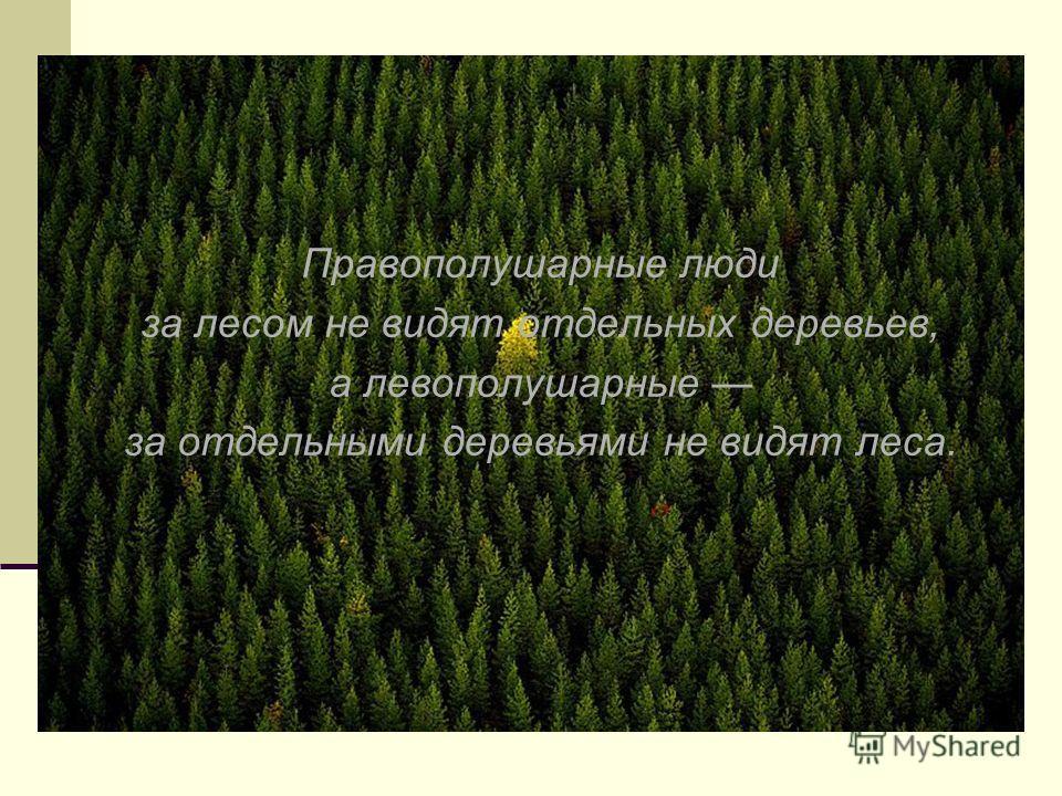 Правополушарные люди за лесом не видят отдельных деревьев, а левополушарные за отдельными деревьями не видят леса.