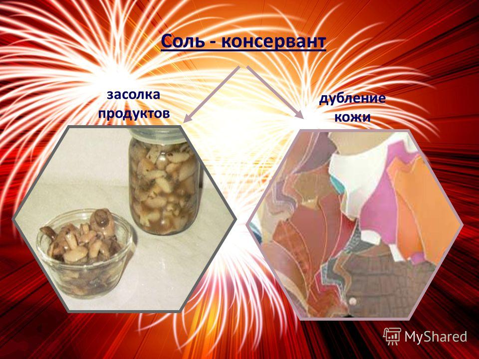Соль - пища и приправа к блюдам людям животным