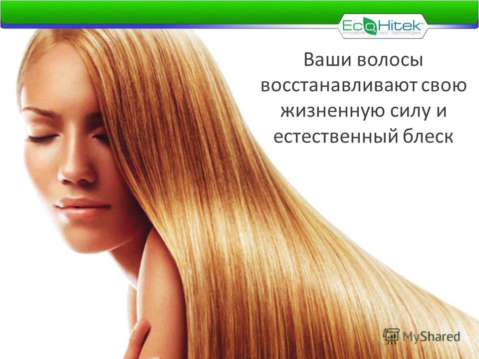 Ваши волосы восстанавливают свою жизненную силу и естественный блеск