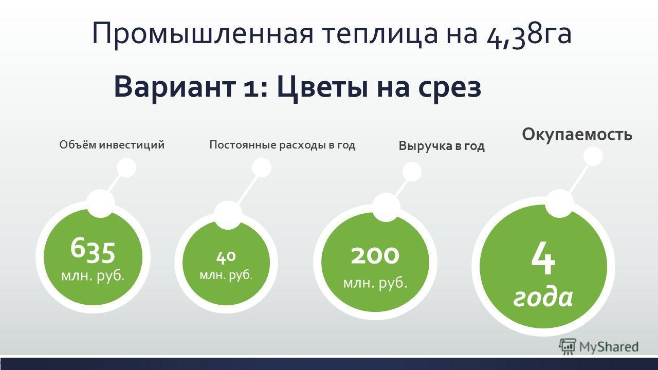 Вариант 1: Цветы на срез 635 млн. руб. 40 млн. руб. 200 млн. руб. Промышленная теплица на 4,38га Выручка в год Постоянные расходы в годОбъём инвестиций Окупаемость 4 года
