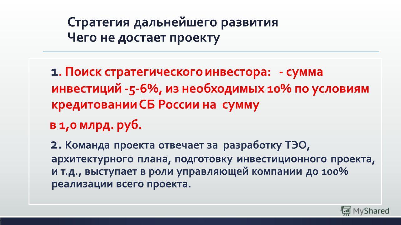 Стратегия дальнейшего развития Чего не достает проекту 1. Поиск стратегического инвестора: - сумма инвестиций -5-6%, из необходимых 10% по условиям кредитовании СБ России на сумму в 1,0 млрд. руб. 2. Команда проекта отвечает за разработку ТЭО, архите