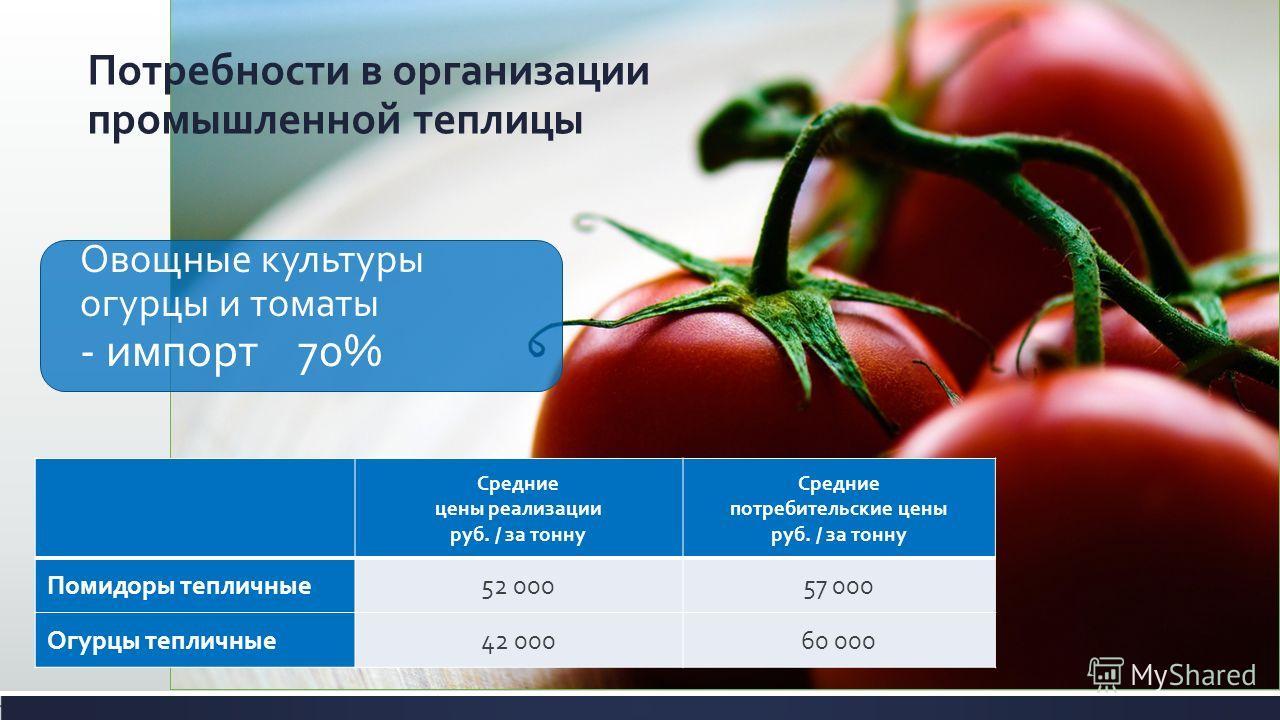 Овощные культуры огурцы и томаты - импорт 70% Средние цены реализации руб. / за тонну Средние потребительские цены руб. / за тонну Помидоры тепличные52 00057 000 Огурцы тепличные42 00060 000 Потребности в организации промышленной теплицы