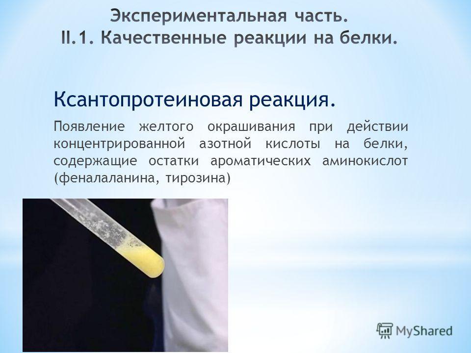 Ксантопротеиновая реакция. Появление желтого окрашивания при действии концентрированной азотной кислоты на белки, содержащие остатки ароматических аминокислот (феналаланина, тирозина)