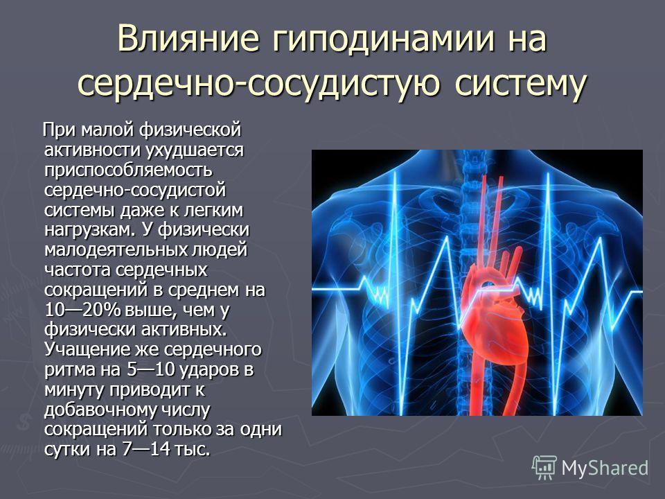 Влияние гиподинамии на сердечно-сосудистую систему При малой физической активности ухудшается приспособляемость сердечно-сосудистой системы даже к легким нагрузкам. У физически малодеятельных людей частота сердечных сокращений в среднем на 1020% выше