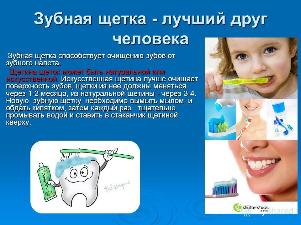 Зубная щетка - лучший друг человека Зубная щетка способствует очищению зубов от зубного налета. Зубная щетка способствует очищению зубов от зубного налета. Щетина щеток может быть натуральной или искусственной. Искусственная щетина лучше очищает пове