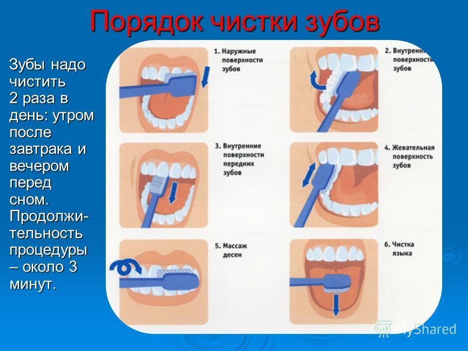 Порядок чистки зубов Зубы надо чистить 2 раза в день: утром после завтрака и вечером перед сном. Продолжи- тельность процедуры – около 3 минут. Зубы надо чистить 2 раза в день: утром после завтрака и вечером перед сном. Продолжи- тельность процедуры