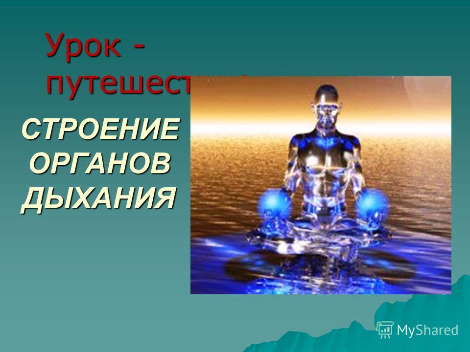 СТРОЕНИЕ ОРГАНОВ ДЫХАНИЯ Урок - путешествие