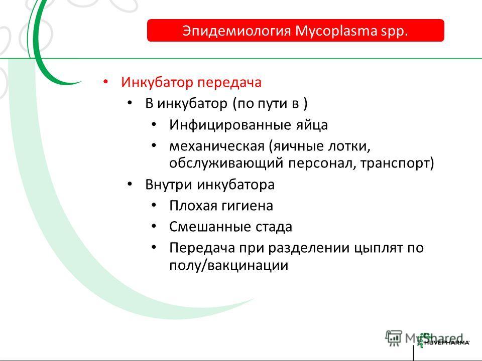 Вертикальная передача Контроль родительских стад Mg, Mm Ms (Mi) не всегда подконтрольна Выделение Mg из: яйцеводов Спермы Яиц Эпидемиология Mycoplasma spp.