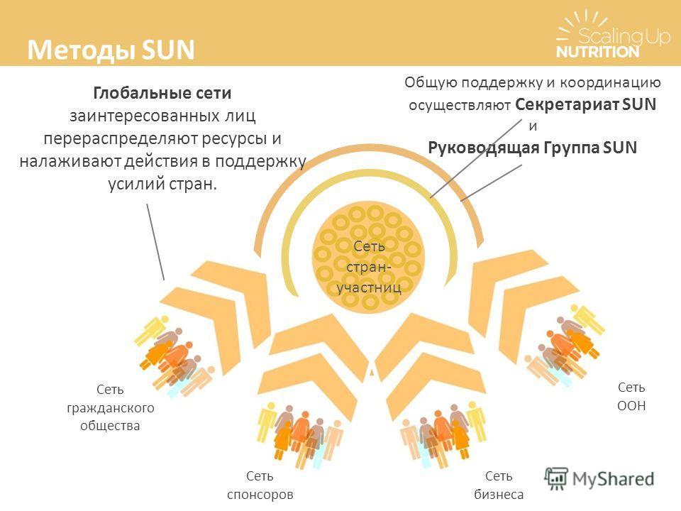 Общую поддержку и координацию осуществляют Секретариат SUN и Руководящая Группа SUN Сеть стран- участниц Сеть спонсоров Сеть гражданского общества Сеть бизнеса Сеть ООН Глобальные сети заинтересованных лиц перераспределяют ресурсы и налаживают действ