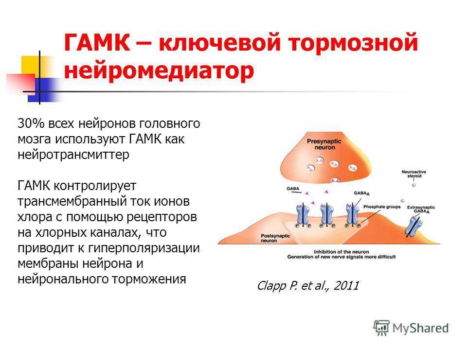 ГАМК – ключевой тормозной нейромедиатор 30% всех нейронов головного мозга используют ГАМК как нейротрансмиттер ГАМК контролирует трансмембранный ток ионов хлора с помощью рецепторов на хлорных каналах, что приводит к гиперполяризации мембраны нейрона