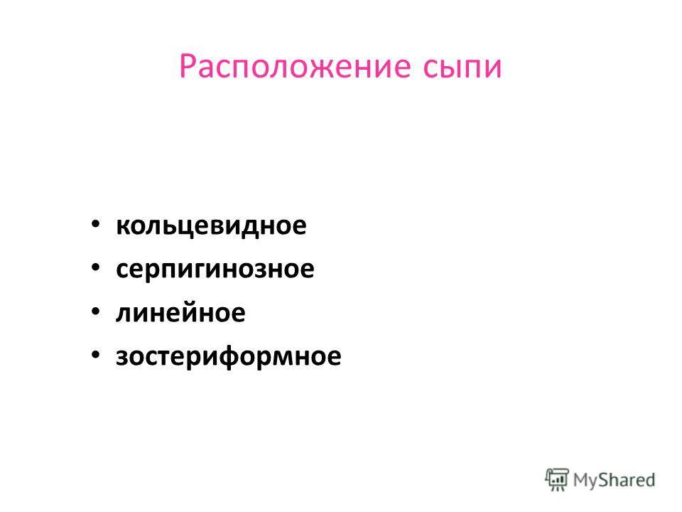 препараты хинолинового ряда