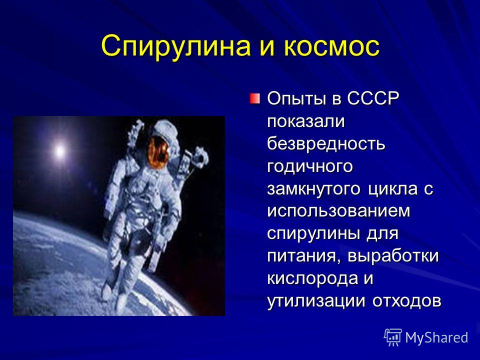 Картинки по запросу Спирулина космос