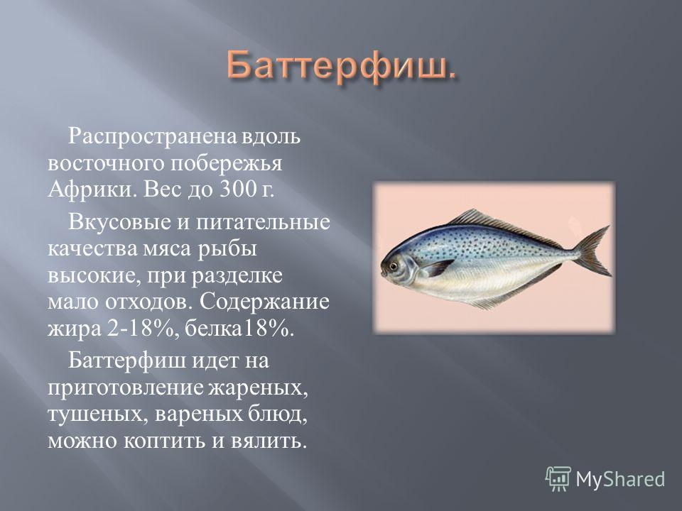 Распространена вдоль восточного побережья Африки. Вес до 300 г. Вкусовые и питательные качества мяса рыбы высокие, при разделке мало отходов. Содержание жира 2-18%, белка 18%. Баттерфиш идет на приготовление жареных, тушеных, вареных блюд, можно копт
