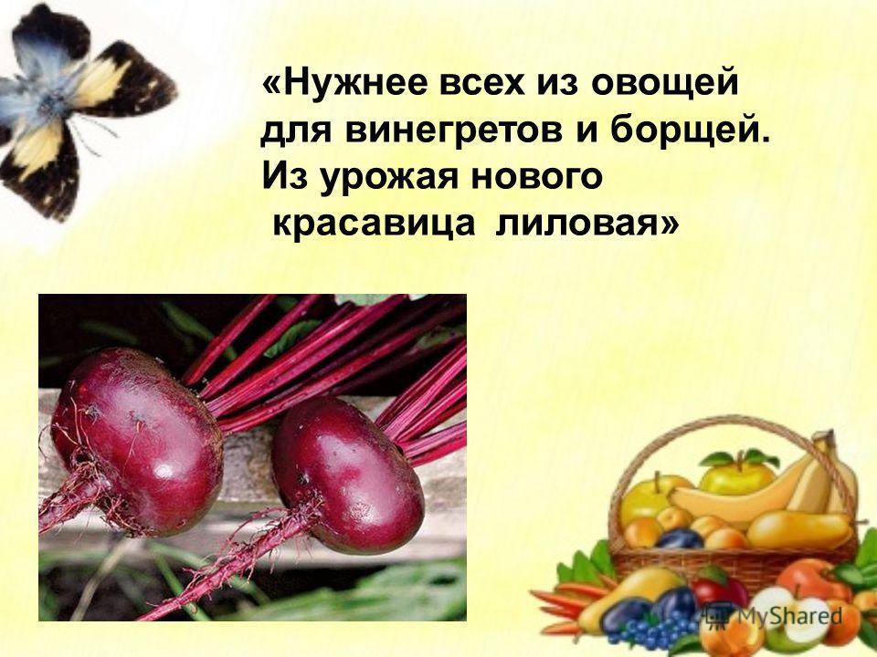 «Нужнее всех из овощей для винегретов и борщей. Из урожая нового красавица лиловая»