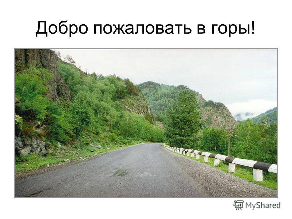 Добро пожаловать в горы!