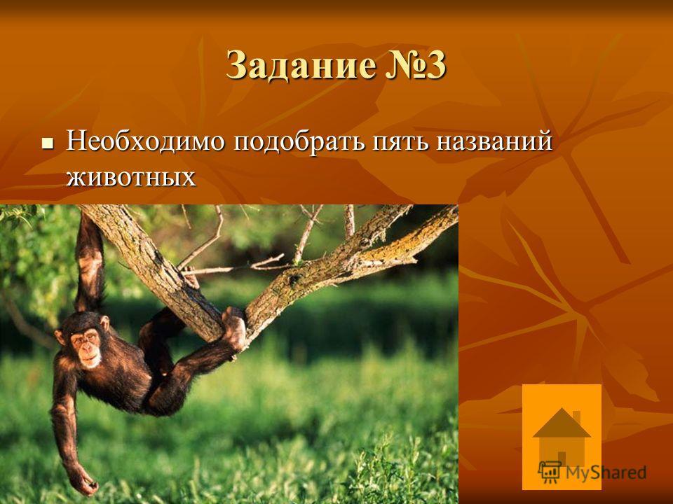 Задание 3 Необходимо подобрать пять названий животных Необходимо подобрать пять названий животных