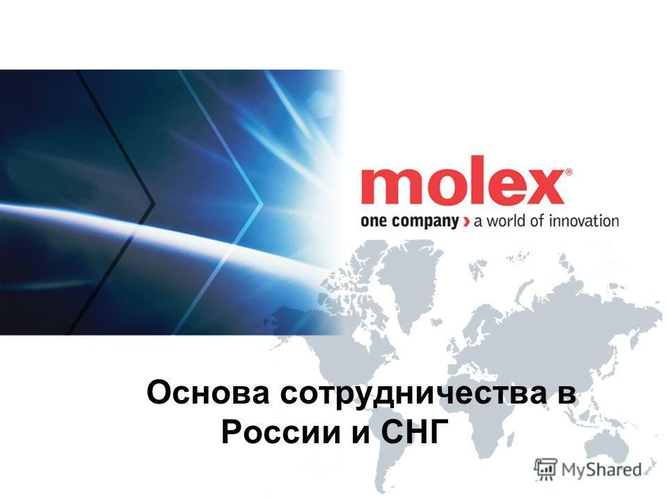 Основа сотрудничества в России и СНГ