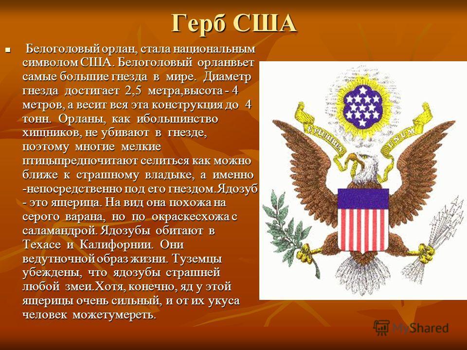 Герб США Белоголовый орлан, стала национальным символом США. Белоголовый орланвьет самые большие гнезда в мире. Диаметр гнезда достигает 2,5 метра,высота - 4 метров, а весит вся эта конструкция до 4 тонн. Орланы, как ибольшинство хищников, не убивают