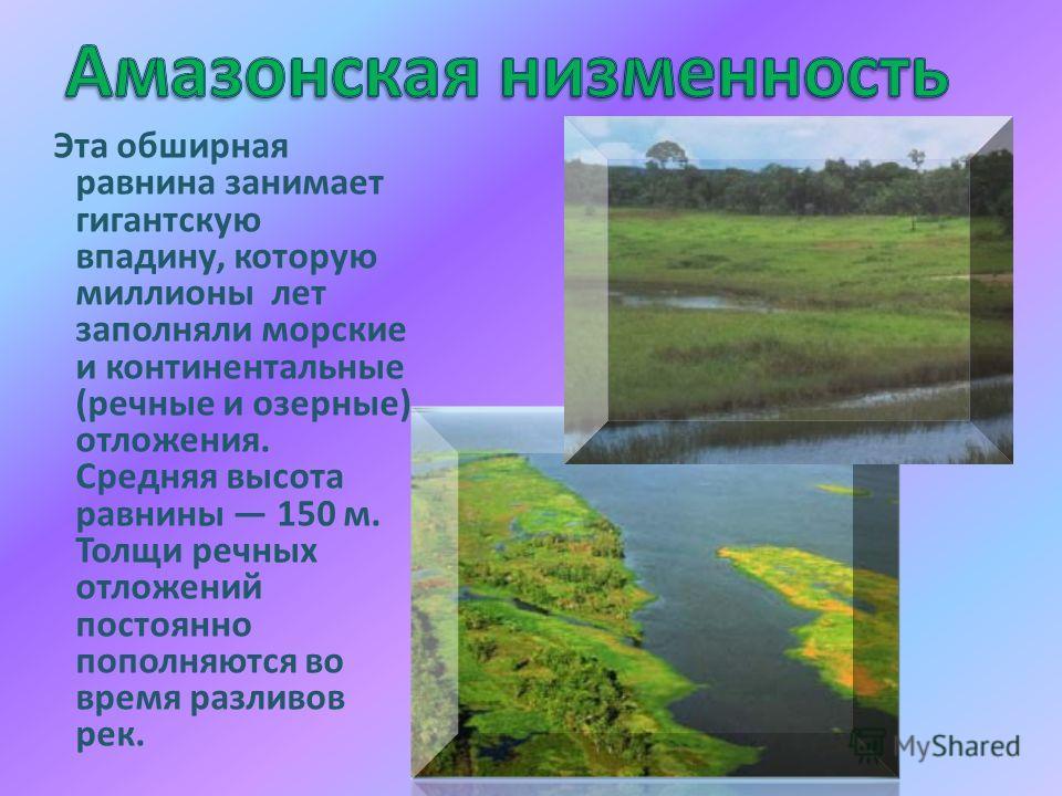Эта обширная равнина занимает гигантскую впадину, которую миллионы лет заполняли морские и континентальные (речные и озерные) отложения. Средняя высота равнины 150 м. Толщи речных отложений постоянно пополняются во время разливов рек.