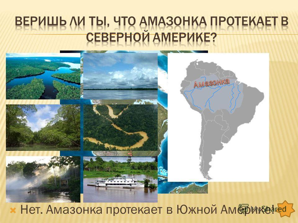 Амазонка протекает в южной америке