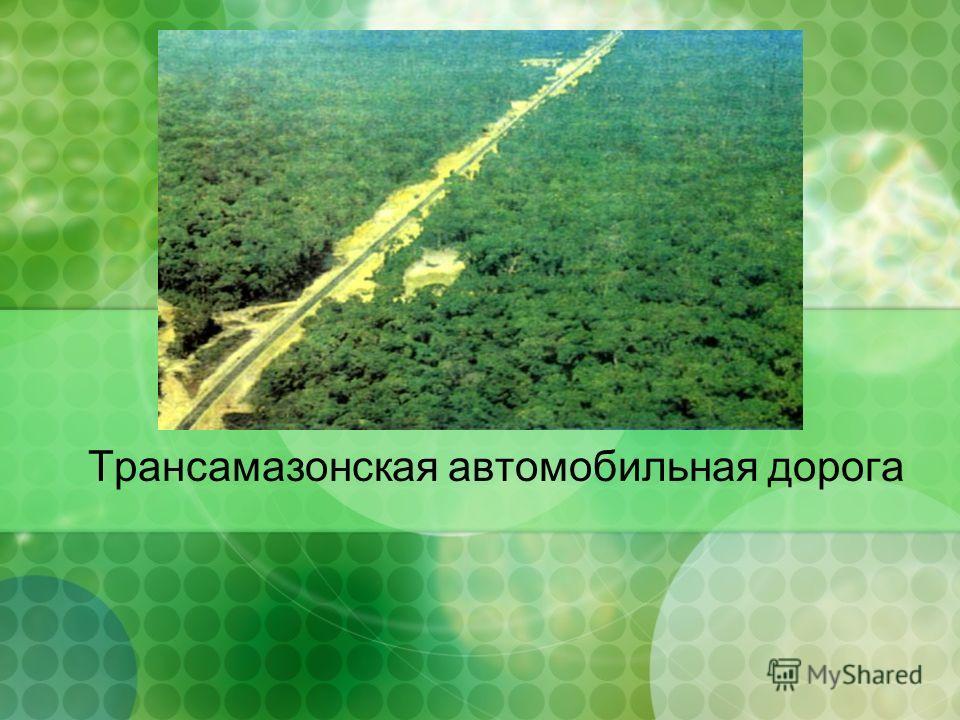 Трансамазонская автомобильная дорога