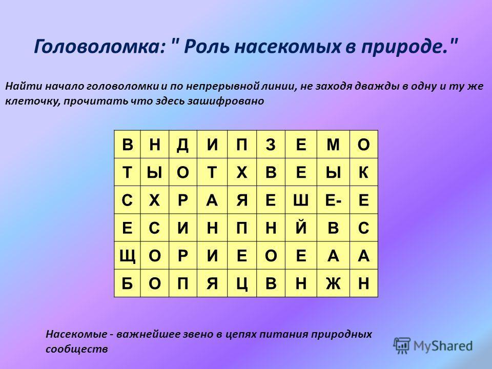 Головоломка: