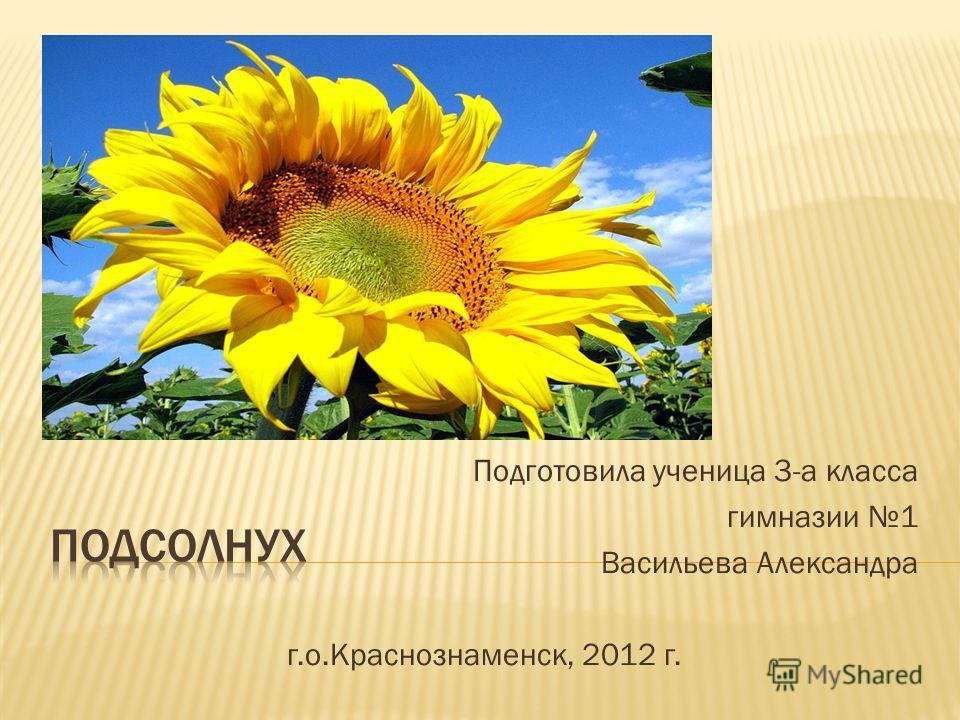 Подготовила ученица 3-а класса гимназии 1 Васильева Александра г.о.Краснознаменск, 2012 г.