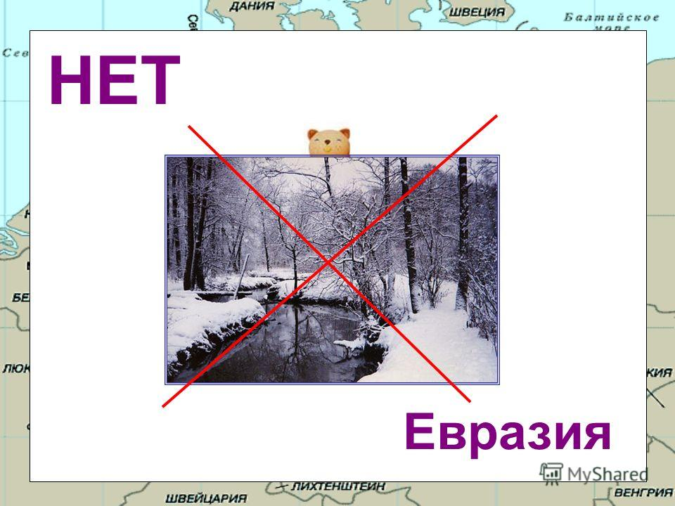 На каком материке круглый год зима? Евразия Антарктида Северная Америка