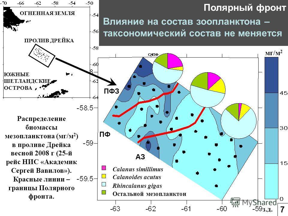 з.д. мг/м 2 ПФЗ ПФ АЗ ПРОЛИВ ДРЕЙКА ЮЖНЫЕ ШЕТЛАНДСКИЕ ОСТРОВА ОГНЕННАЯ ЗЕМЛЯ Calanus simillimus Остальной мезопланктон Calanoides acutus Rhincalanus gigas Распределение биомассы мезопланктона (мг/м 2 ) в проливе Дрейка весной 2008 г (25-й рейс НИС «А
