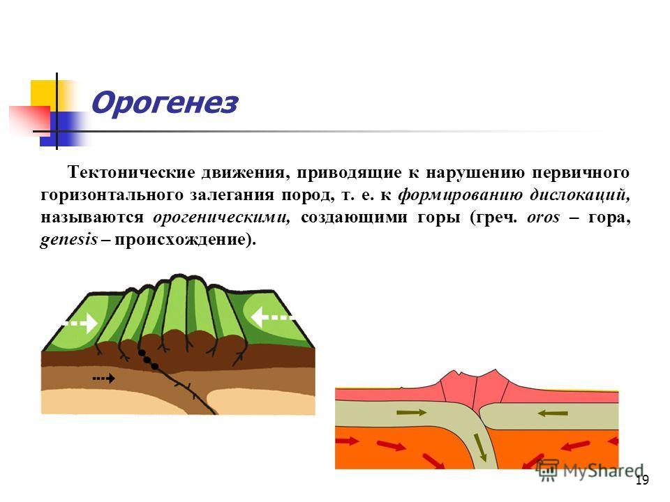 19 Орогенез Тектонические движения, приводящие к нарушению первичного горизонтального залегания пород, т. е. к формированию дислокаций, называются орогеническими, создающими горы (греч. oros – гора, genesis – происхождение).