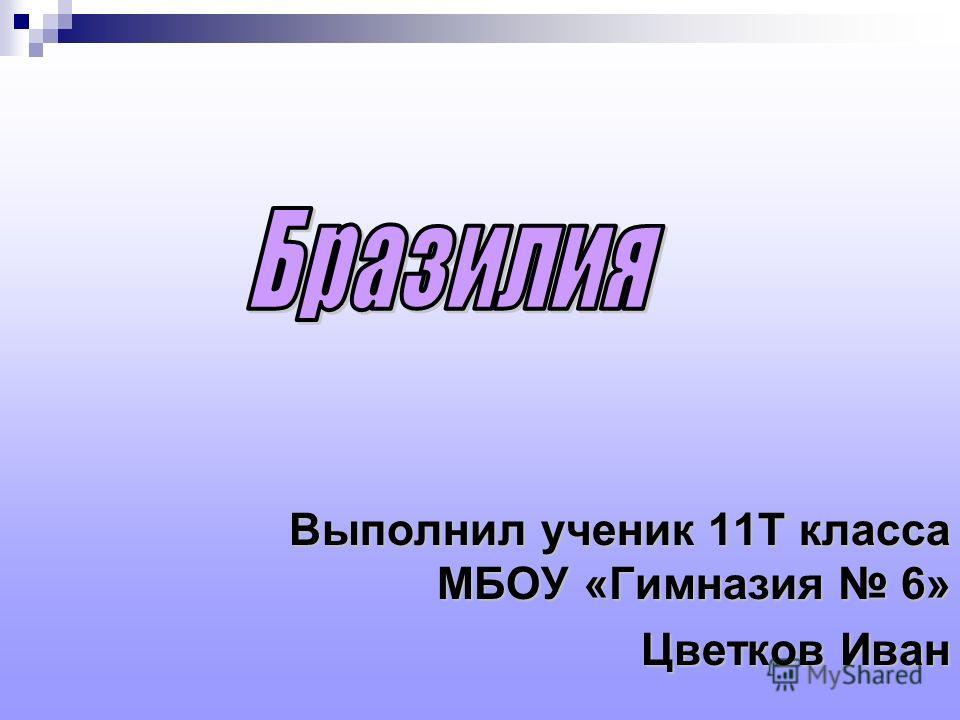 Выполнил ученик 11Т класса МБОУ «Гимназия 6» Цветков Иван