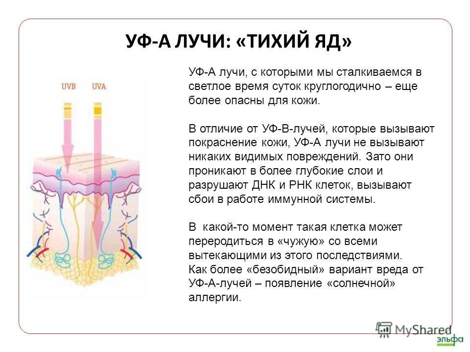 УФ-А ЛУЧИ: «ТИХИЙ ЯД» УФ-А лучи, с которыми мы сталкиваемся в светлое время суток круглогодично – еще более опасны для кожи. В отличие от УФ-В-лучей, которые вызывают покраснение кожи, УФ-А лучи не вызывают никаких видимых повреждений. Зато они прони