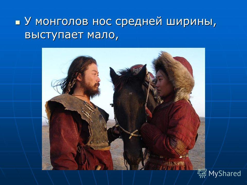 У монголов нос средней ширины, выступает мало, У монголов нос средней ширины, выступает мало,