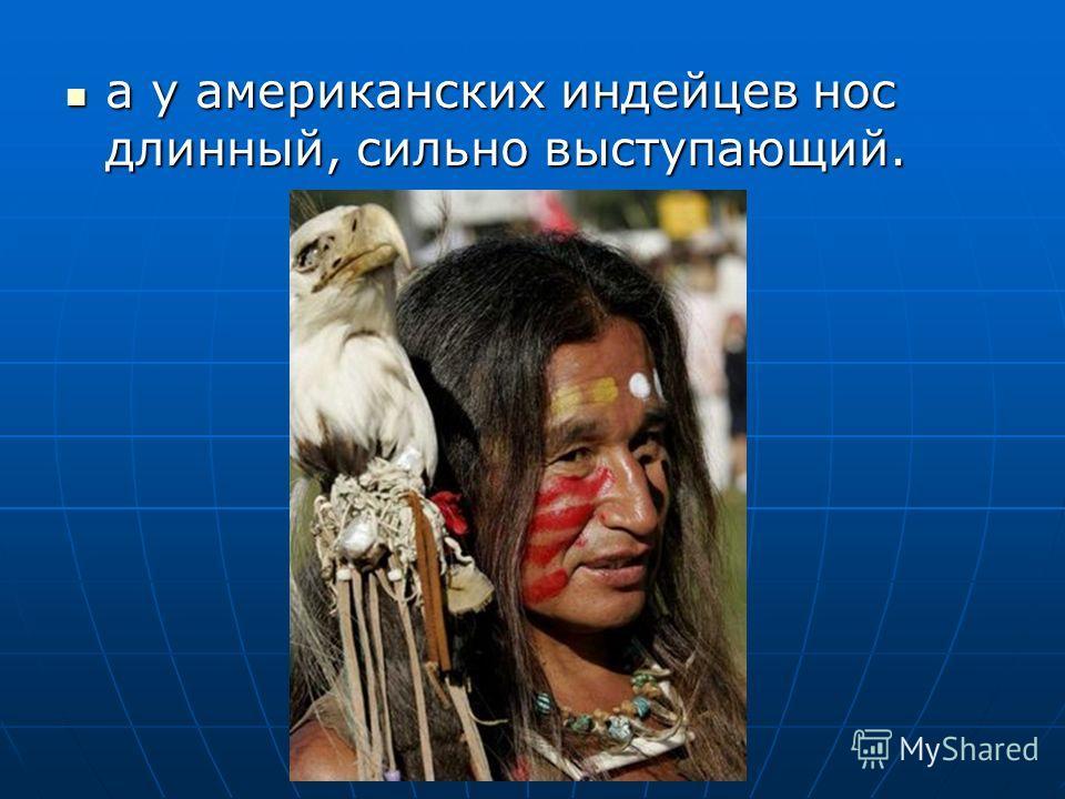 а у американских индейцев нос длинный, сильно выступающий. а у американских индейцев нос длинный, сильно выступающий.