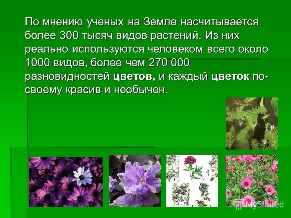 По мнению ученых на Земле насчитывается более 300 тысяч видов растений. Из них реально используются человеком всего около 1000 видов, более чем 270 000 разновидностей цветов, и каждый цветок по- своему красив и необычен.