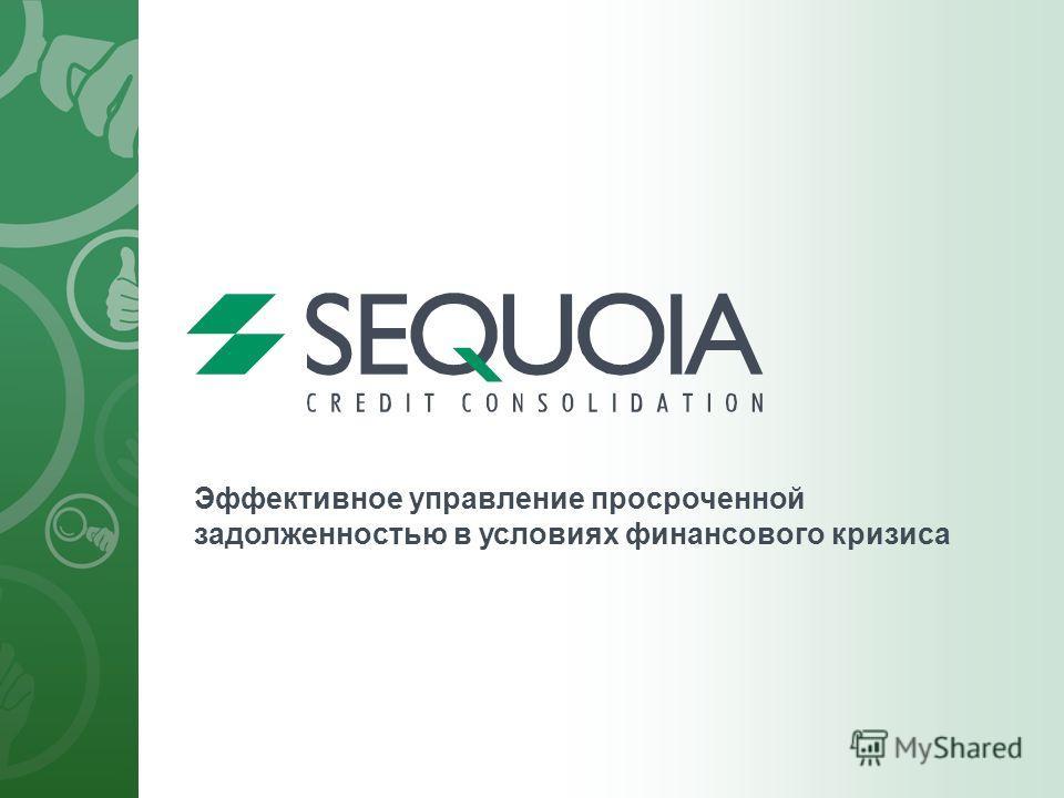 Эффективное управление просроченной задолженностью в условиях финансового кризиса