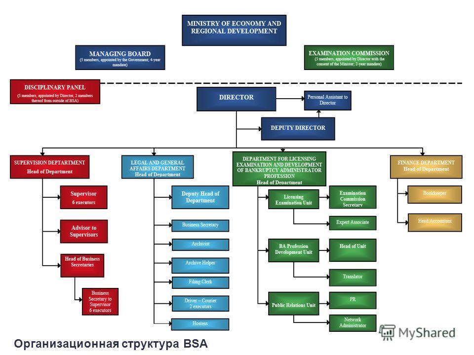 Организационная структура BSA