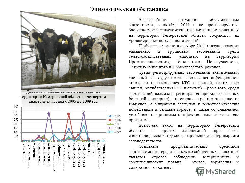 Эпизоотическая обстановка Чрезвычайные ситуации, обусловленные эпизоотиями, в октябре 2011 г. не прогнозируются. Заболеваемость сельскохозяйственных и диких животных на территории Кемеровской области сохранится на уровне среднемноголетних значений. Н