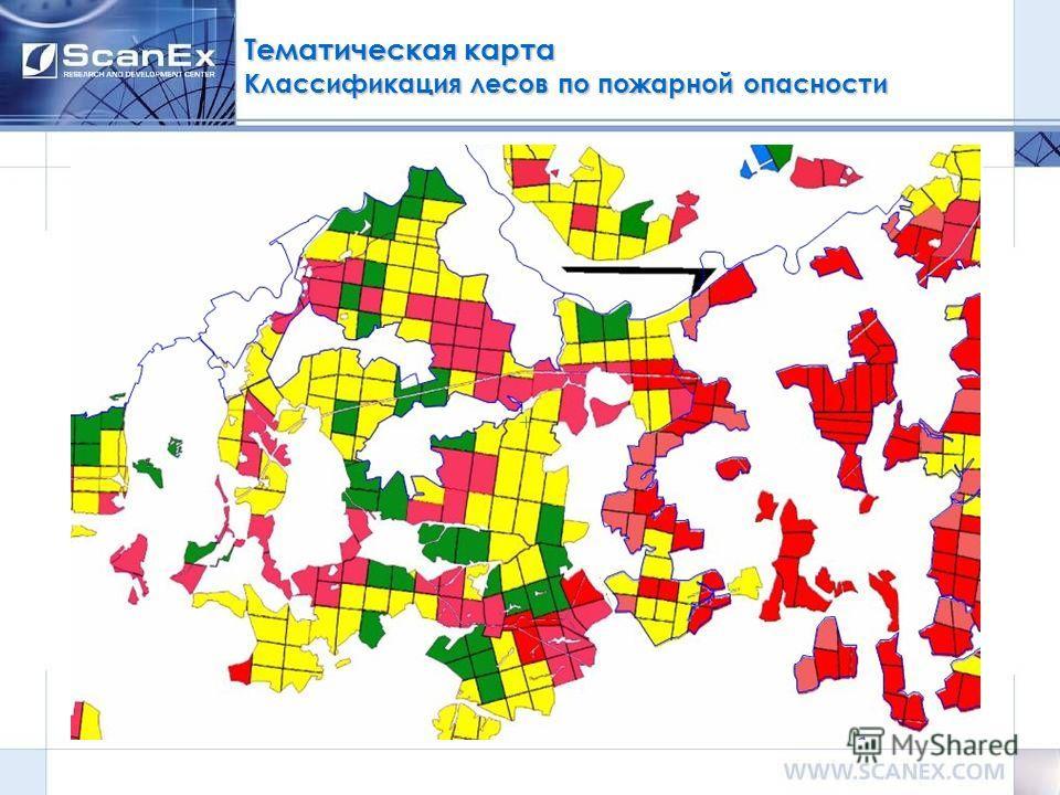Тематическая карта Классификация лесов по пожарной опасности