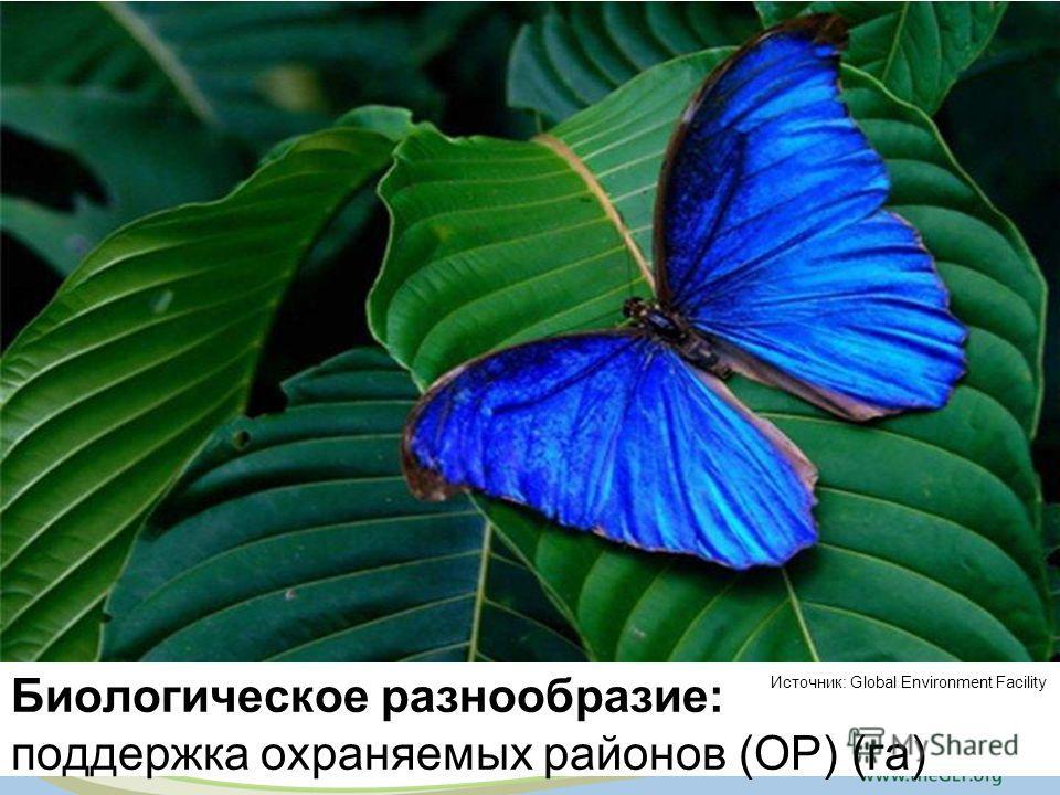 Биологическое разнообразие: поддержка охраняемых районов (ОР) (га) Источник: Global Environment Facility