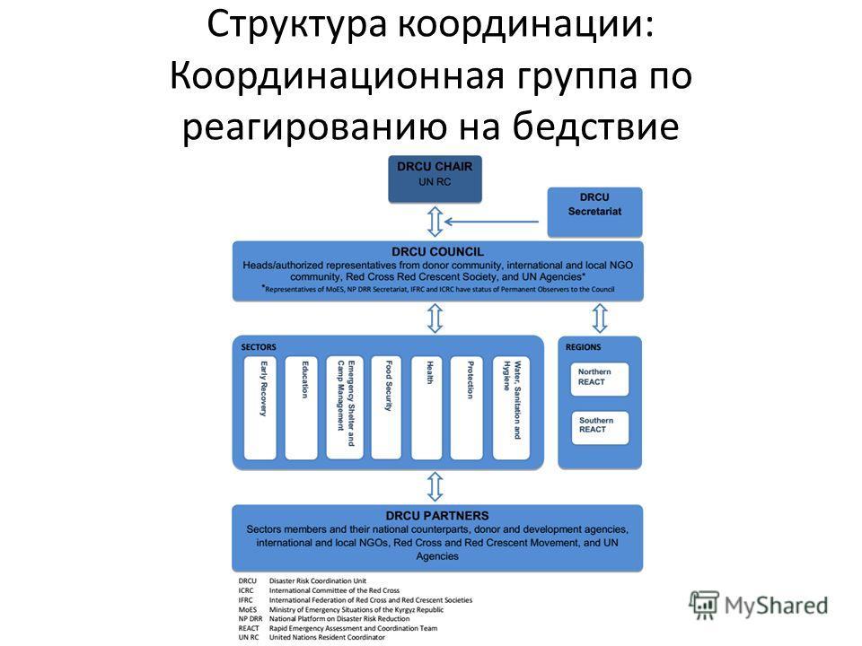 Структура координации: Координационная группа по реагированию на бедствие