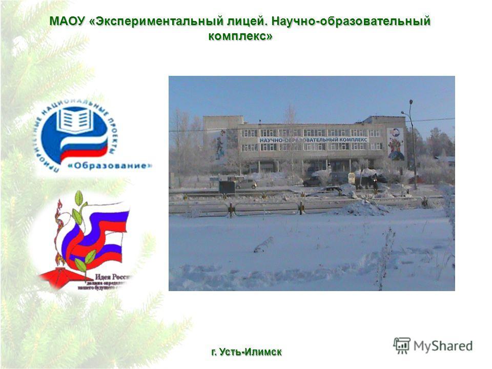 МАОУ «Экспериментальный лицей. Научно-образовательный комплекс» г. Усть-Илимск