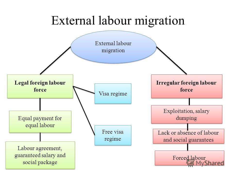 External labour migration Legal foreign labour force Irregular foreign labour force Exploitation, salary dumping Equal payment for equal labour Lack or absence of labour and social guarantees Labour agreement, guaranteed salary and social package For