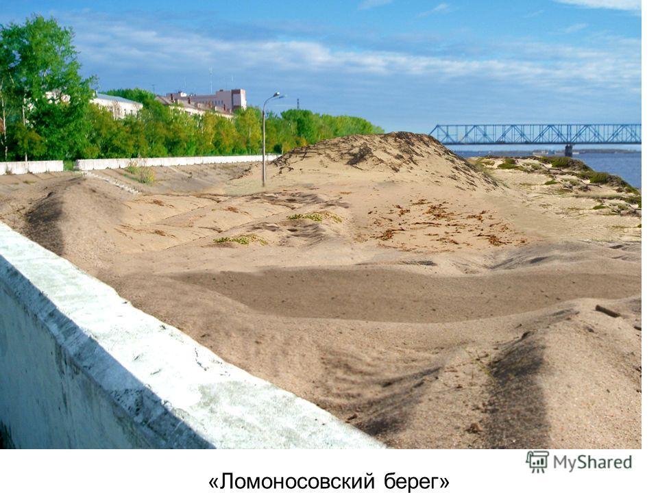 «Ломоносовский берег»
