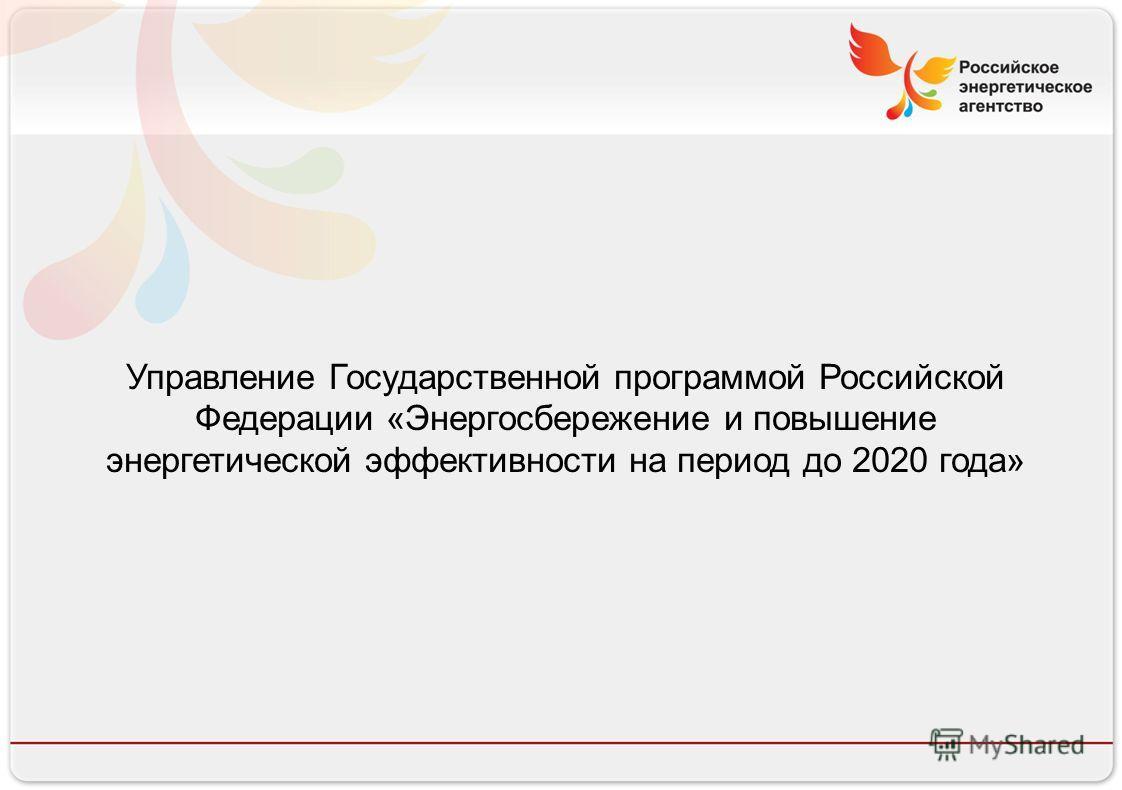 Российское энергетическое агентство 13.08.10 Управление Государственной программой Российской Федерации «Энергосбережение и повышение энергетической эффективности на период до 2020 года»
